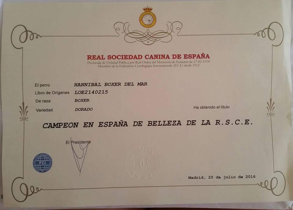 Título campeón de España